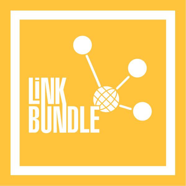 Link-Bundle4